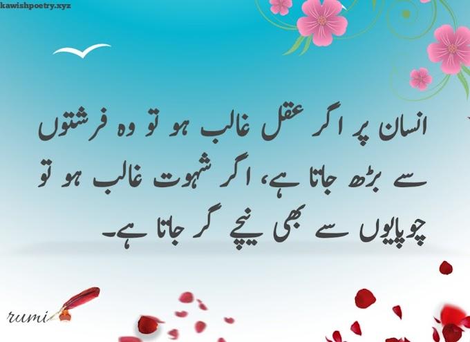 Rumi Quotes In Urdu | Rumi Quotes Urdu