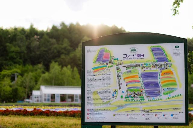 北海道自由行地圖-富良野