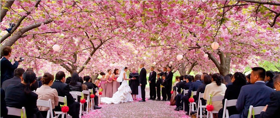 Cool Wedding Reception Ideas: Beautiful Brides Magazine: 9 Unique Wedding Venue Ideas