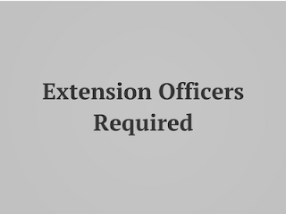 Marketing-and-Extension-Officer
