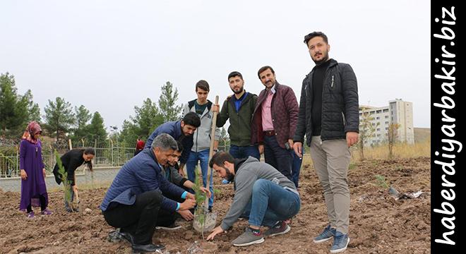 Diyarbakır'da üniversite öğrencilerinden anlamlı etkinlik