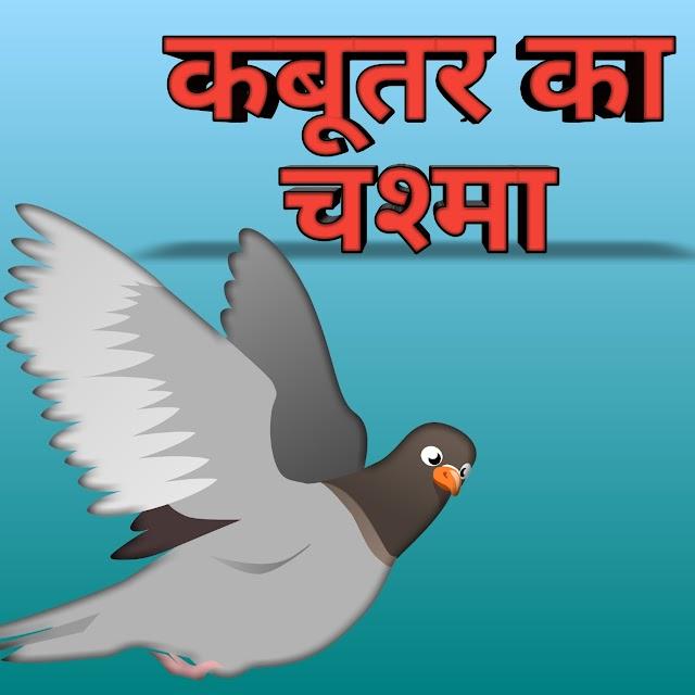 कबूतर का चश्मा,kabootar ka chashma