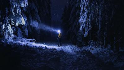 HD Wallpaper Winter, Lonely Man, Flashlight, Night, Forest, Snow