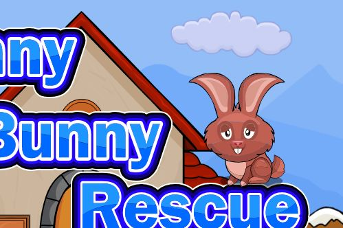 Funny Bunny Rescue Walkthrough