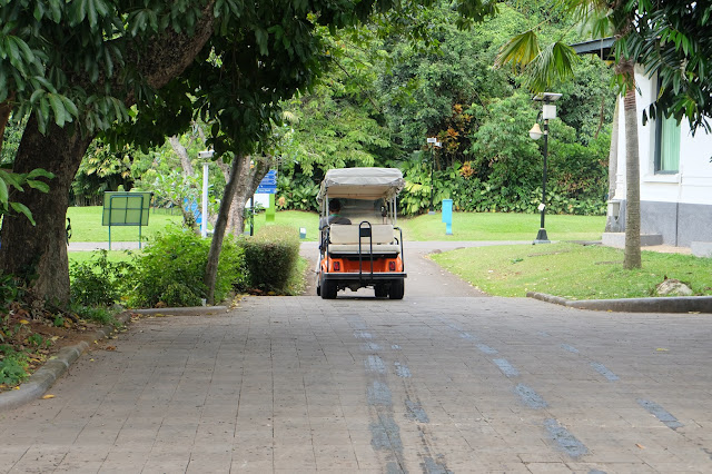 golf car kebun raya bogor