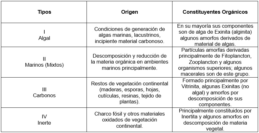 Origen de los Hidrocarburos - Tipos de Kerógeno