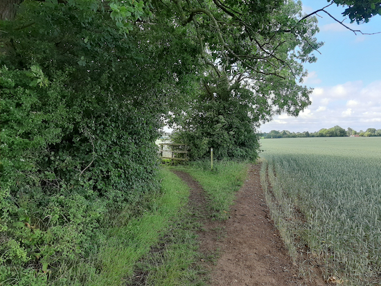 The bridleway mentioned in point 6 below  Image by Hertfordshire Walker released via Creative Commons BY-NC-SA 4.0