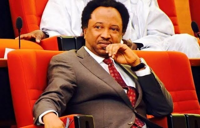 Even if Buhari is giving extra 50 Years, Nigerians will Still live in Hardship - Senator Shehu Sani claims.