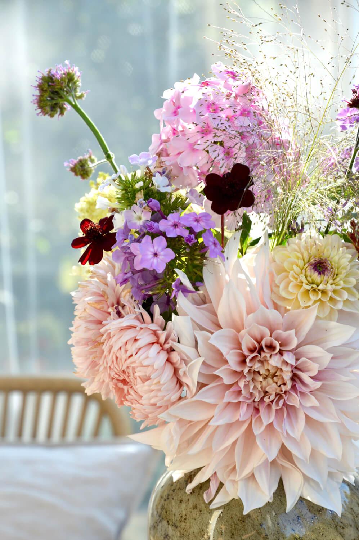 kasvata-omat-kukat