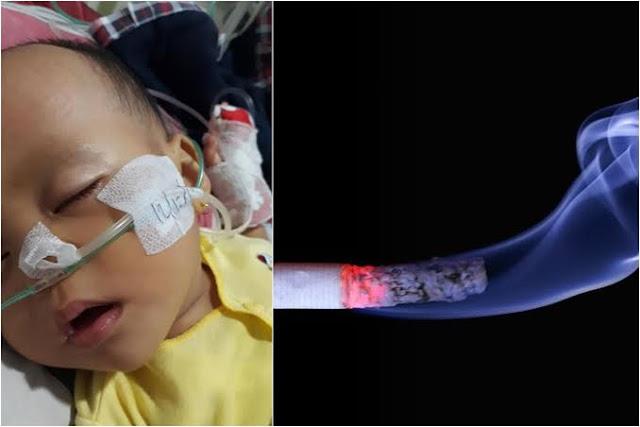 Viral Bayi Derita Bronkopneumonia Karena Ayahnya Perokok, Kenali Bahayanya: Infeksi yang Mengancam Nyawa Bayi