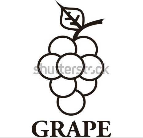 illustration example grape