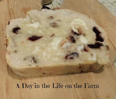 Cranberry Pecan Sourdough Bread