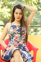 HeyAndhra Deeksha Panth Latest Sizzling Photo Shoot HeyAndhra.com