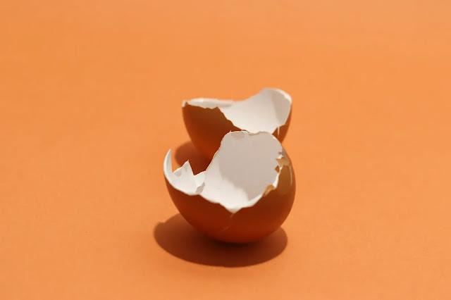 فوائد و اضرار قشر البيض