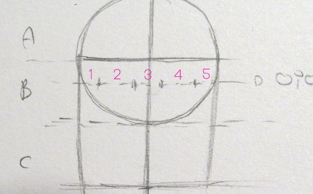 Línea de altura de los ojos dividida en cinco partes iguales para situar los ojos