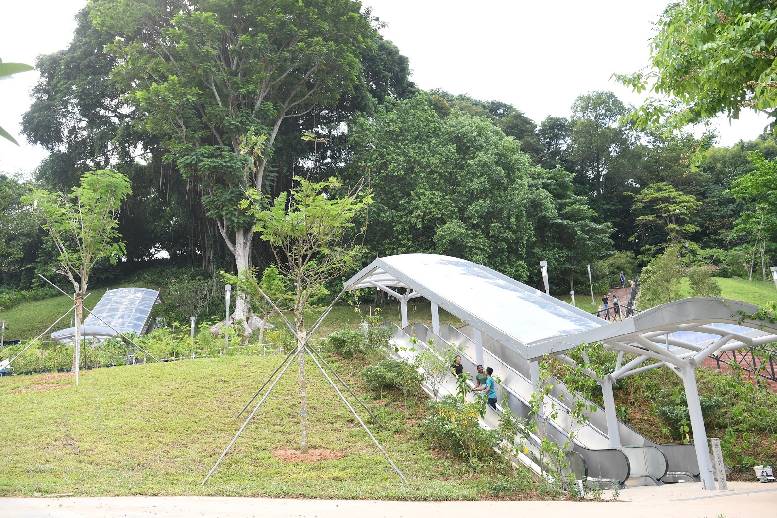 Jubilee Park (Phase 1)
