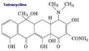 Tetracycline Molecule