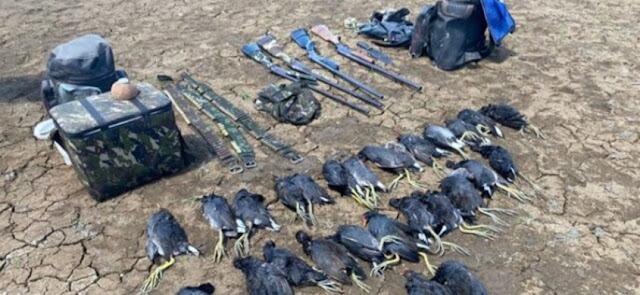 PM apreende 4 armas e 26 animais abatidos em Patos