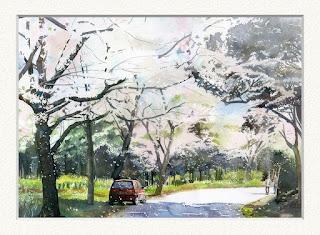 水彩画「チェリーブロッサム」満開の桜と赤い車