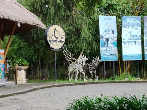 Mengulik Desa Wisata Bebek Mebaris Di Ubud