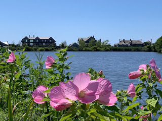 View over Agawam Pond of large mansions on the shore