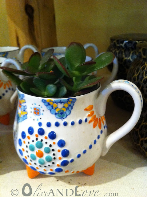 jade plant tea cup anthropologie