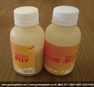 jual royal jelly di pati, royal jelly kesuburan pati, royal jelly Pati, supplier royal jelly pati, tempat jual royal jelly di pati, toko royal jelly pati,