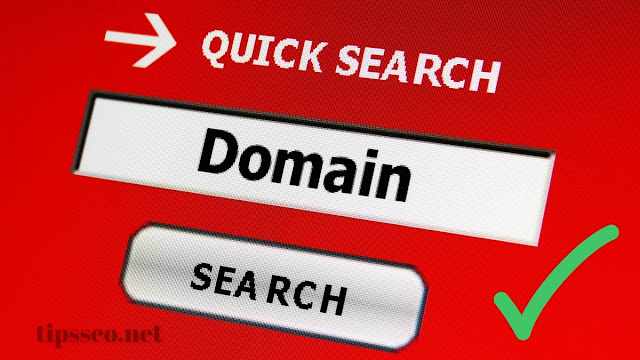 Cara cek domain