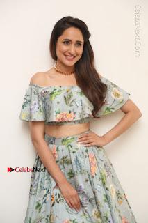 Actress Pragya Jaiswal Stills in Floral Dress at turodu Interview  0097.JPG