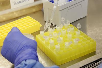 Brasil investiga 13 casos suspeitos de infecção por coronavírus