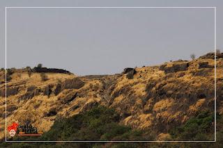 किल्ले कुंजरगड / कोंबडा किल्ला (Kunjargad)