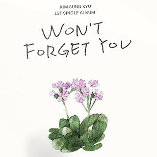 KIM SUNG KYU Won't Forget You