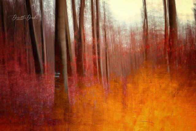 photoart, art, Kunst, Fotokunst, abstractart, icm, intentional camera movement, textureblend, Dorothe Domke, Sauerland, autumnal