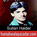 https://humaliwalaazadar.blogspot.com/2019/09/sultan-haider-nohay-2020.html