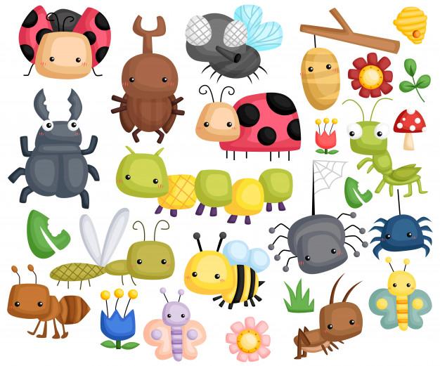 Los insectos del planeta tierra