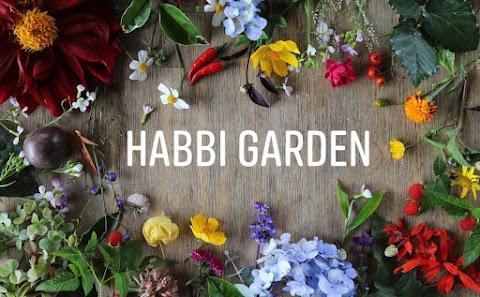 Habbi Garden - Nơi tìm về sau những ngày làm việc căng thẳng tại Bảo Lộc