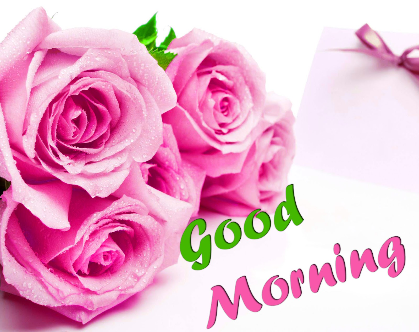 good morning images with rose flowers for whatsapp