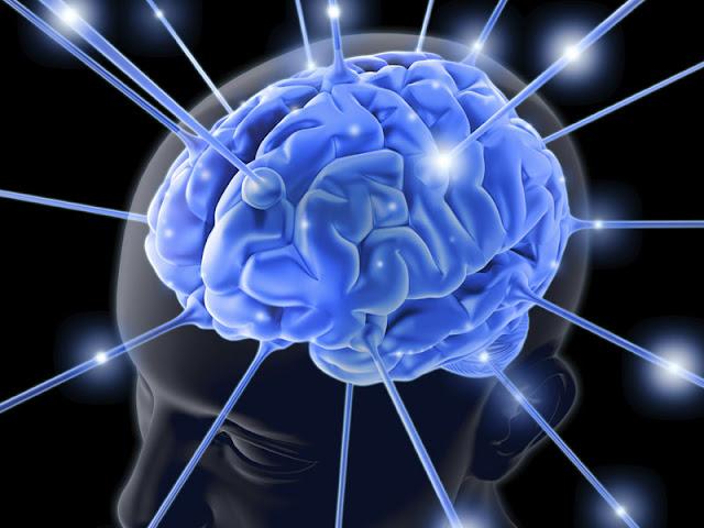 Tips Meningkatkan Kinerja Otak