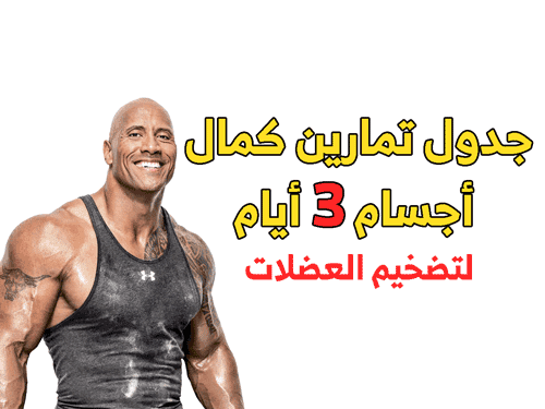 دول تمارين كمال أجسام 3 أيام