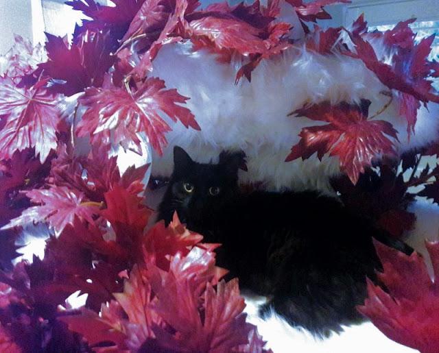 Weirwood Fantasy Cat Tree