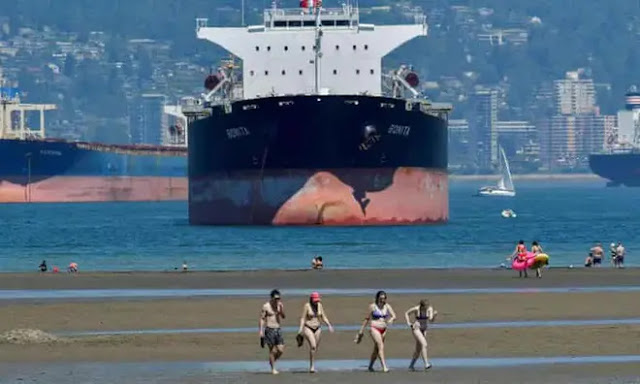 People swim in the sea in Vancouver during high temperatures in Canada. Photo: Reuters