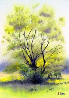 水彩画「新緑」 草原に新緑をつけた一本の木
