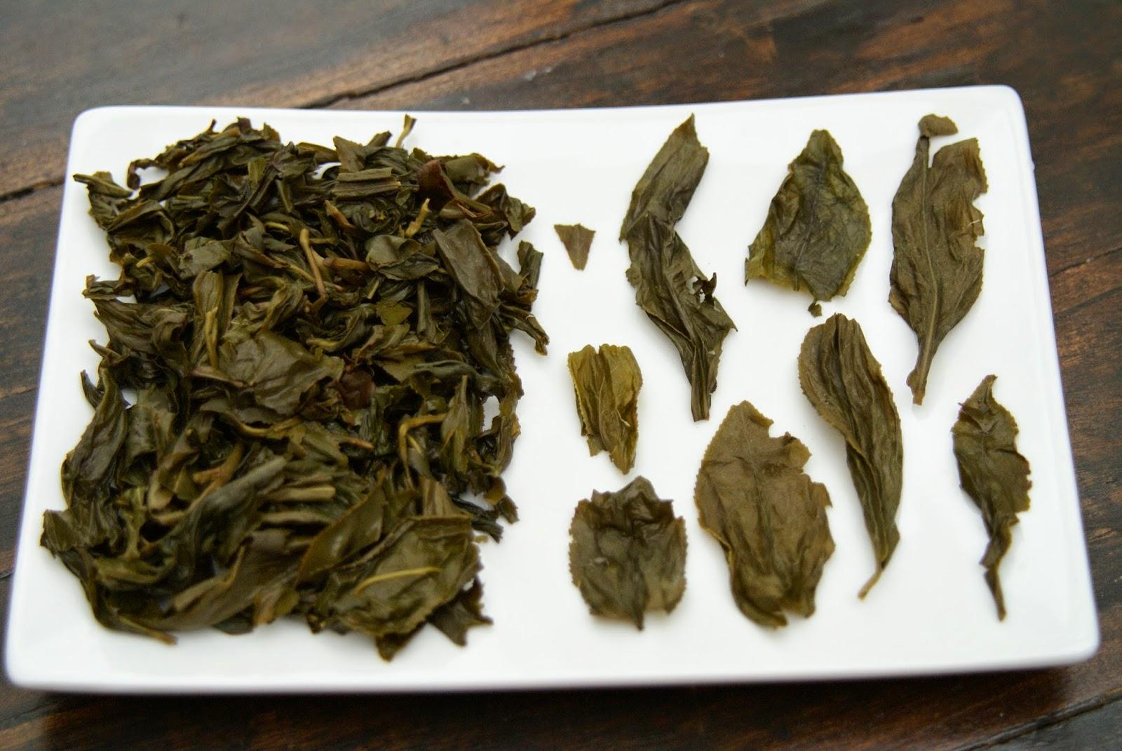 wenshan baozhong taiwan