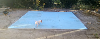 Thelma helps us lay out the insulation