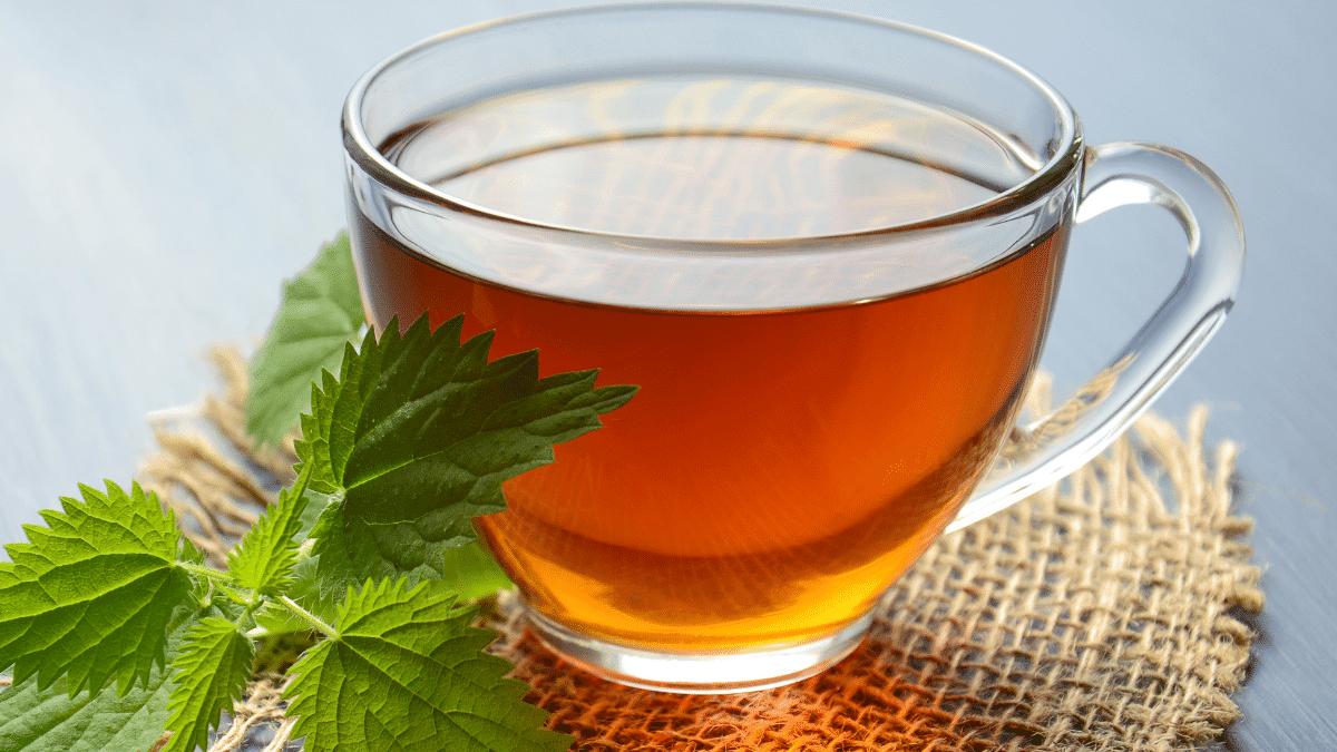 Chá Bomba de canela e louro para perder peso e barriga