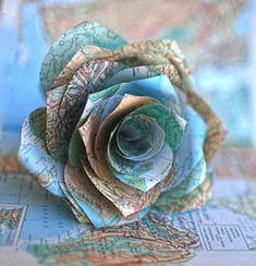 صور ورد , اجمل صور ورد , انواع واسماء الورد كل ما تريد معرفته عن الورد