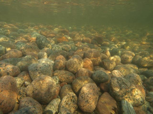 vedenalaiskuva, pään kokoisia kiviä