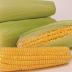 Kandungan Nutrisi dan Manfaat Jagung Manis Bagi Kesehatan