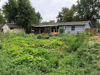 sunflowers in foreground, house in background, sea of vegetables in-between