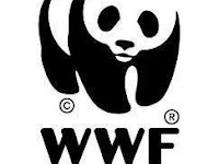 WWF Indonesia Vacancy, Species and Habitat Coordinator for BBS